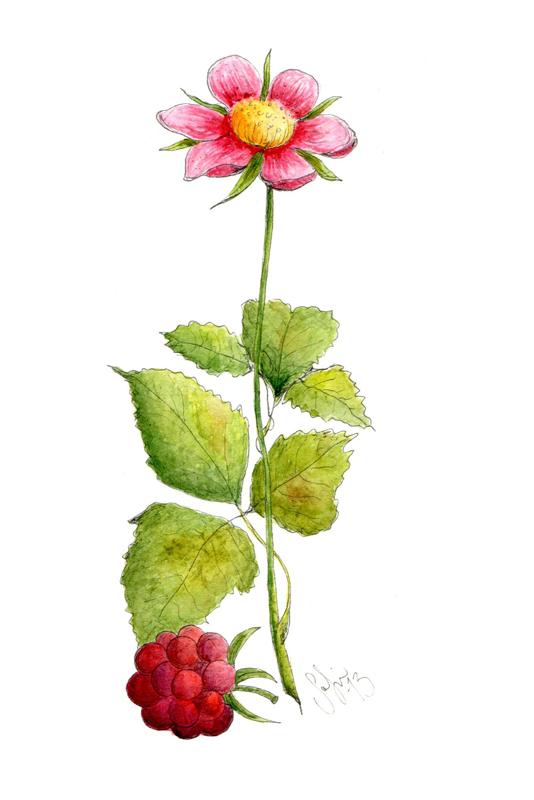 pinkflower_sofielindkvist
